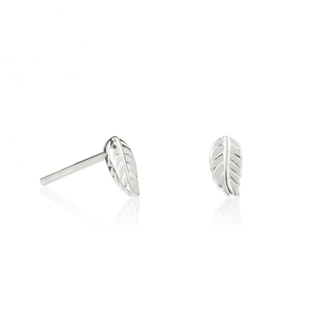 Daisy London Sterling Silver Mini Leaf Stud Earrings