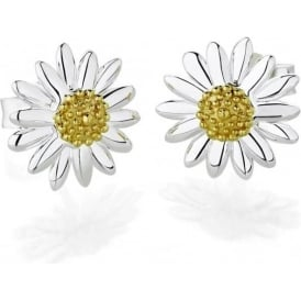 Sterling Silver & Yellow Gold Plated 10mm Classic Daisy Stud Earrings