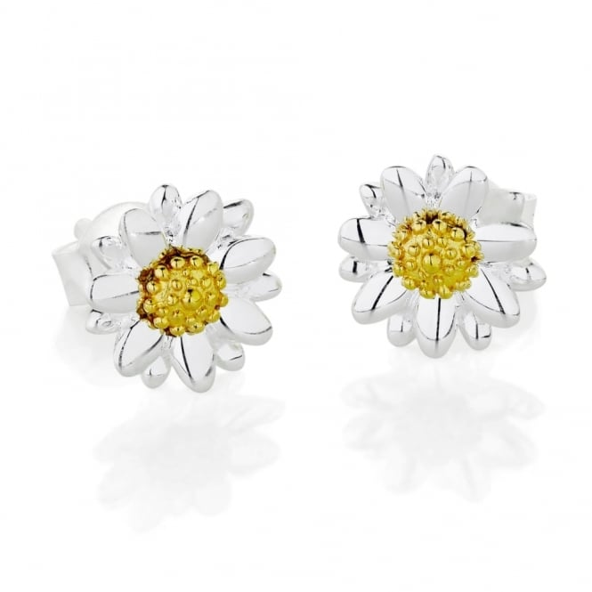 Daisy London Sterling Silver & Yellow Gold Plated 8mm Bellis Daisy Stud Earrings